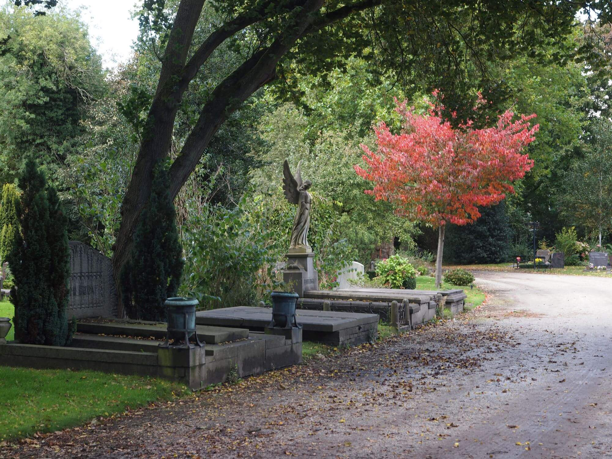 leafy woodland cemetery in autumn with trees and angel statue